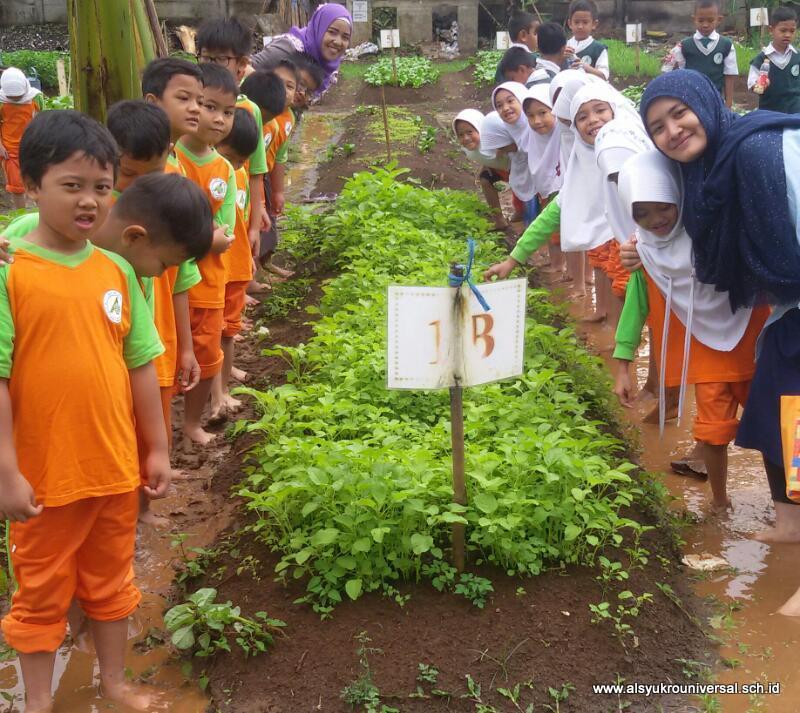 Program Pembiasaan Gardening